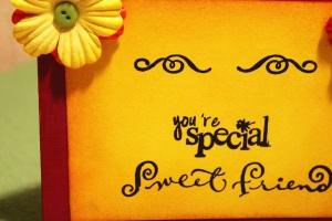 special friend 1b copy